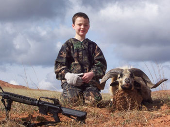 sheep hunting, sheep hunts, big horned sheep hunting, sheep hunting outfitters, sheep hunting ranch