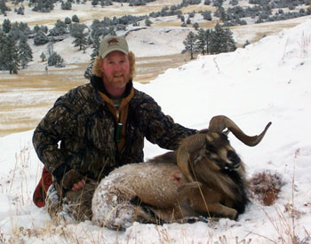 shhep hunting, dall sheep hunting, mountain goat hunting